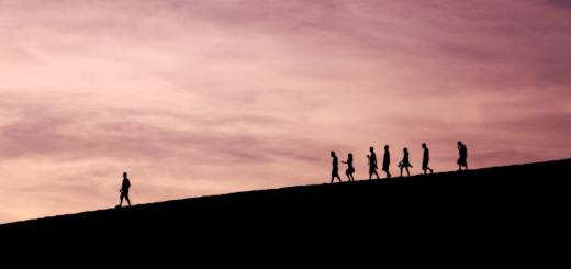 Titelbild zum Gastbeitrag von Luke McBride von Carl Duisberg Centren zum Thema Global Leadership